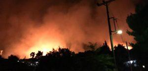 Calamosin leiritila Kreikassa välttyi täpärästi metsäpalolta